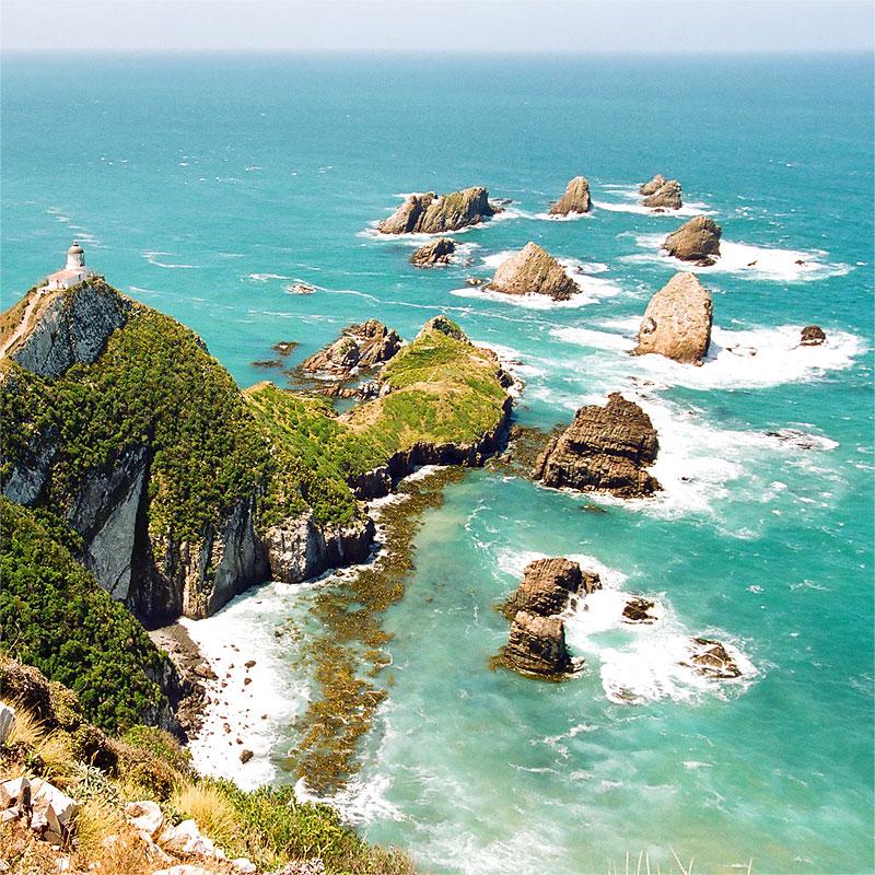Доставка грузов из Новой Зеландии