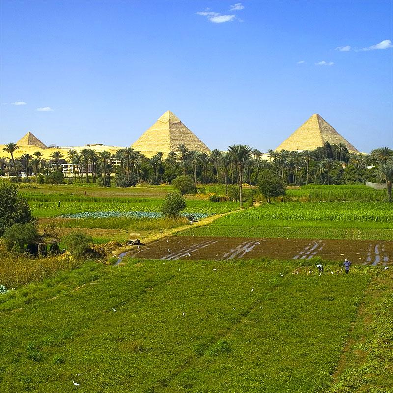 Перевозки грузов из Египта
