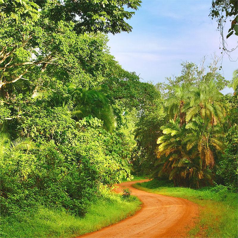 Перевозка грузов в Сьерра-Леоне