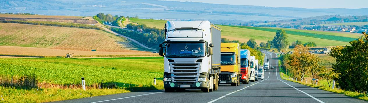 Автомобильные перевозки грузов из Германии
